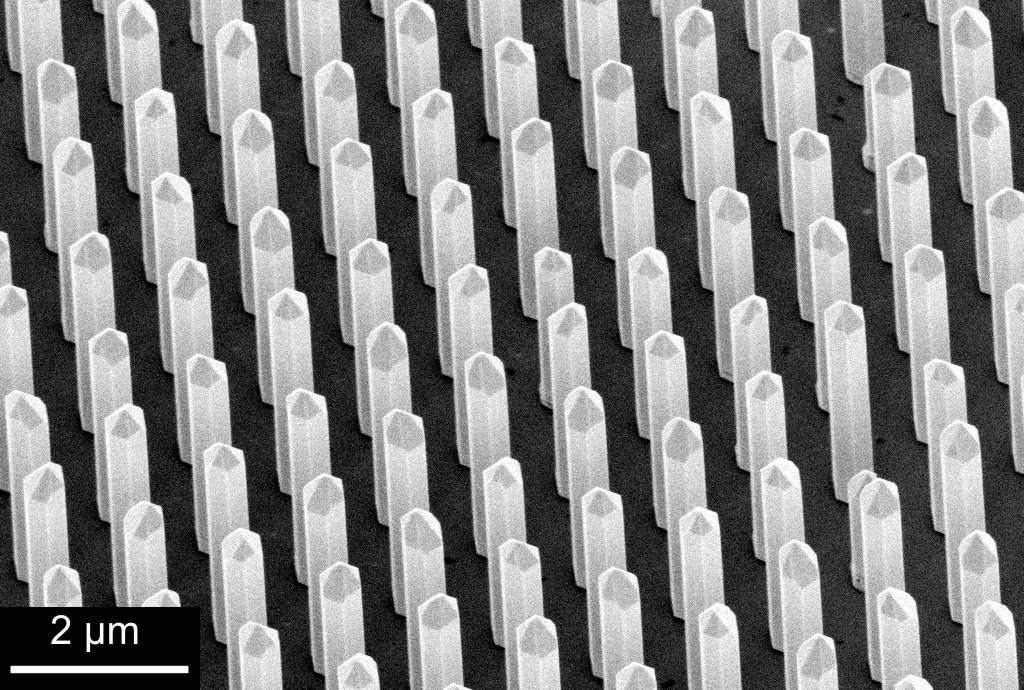 Raster-Elektronen-Mikroskop-Bild von 3D-GaN-Säulen mit einem Aspektverhältnis (Höhe zu Breite) von 10 als Gerüst für 3D-LEDs (IHT TU Braunschweig)