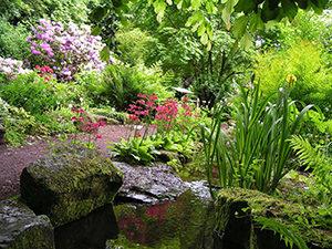 . Feuchtbiotop im Botanischen Garten, Wasserfall mit Bachlauf