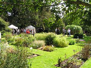 Große Artenvielfalt in der Systematischen Abteilung des Botanischen Gartens