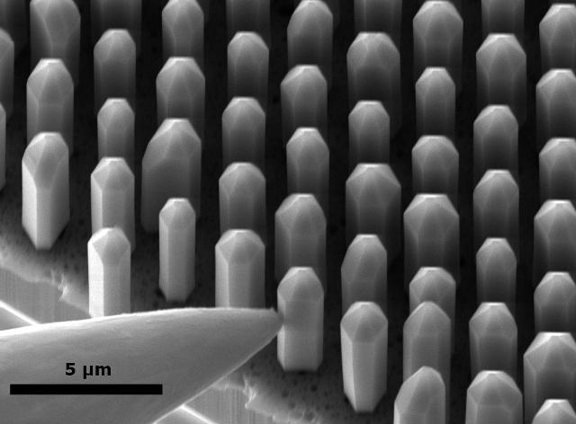 Mit einer Messspitze kontaktierte dreidimensionale LEDs aus Indiumgalliumnitrid im Rasterelektronenmikroskop