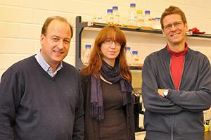 (v.l.) Prof. Reinhard Köster, Dr. Simone Karrie und Prof. Martin Korte freuen sich über die Auszeichnung ihrer Lehrideen.