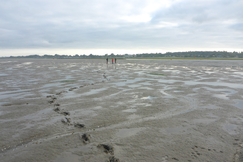 Mit Messgeräten am Strand für das Forschungsprojekt SeaArt