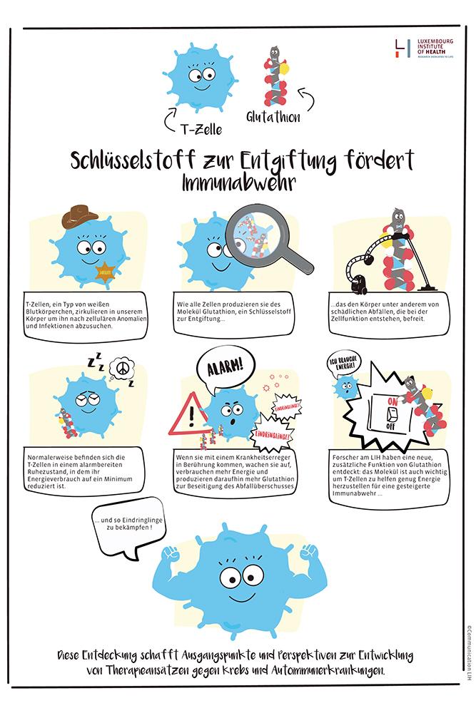 Die Forschungsergebnisse im Cartoon (Bildnachweis: Luxembourg Institute of Health)