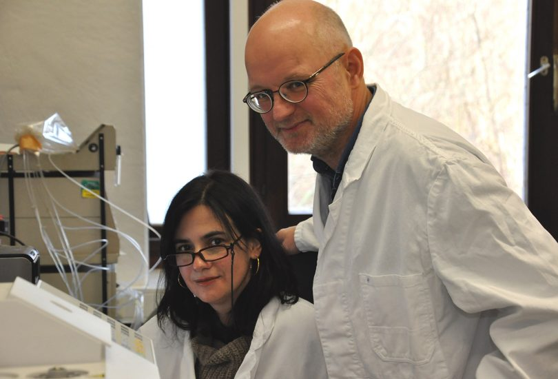 Zu sehen sind die beiden Forscher Dr. Maria João Pimenta Lange und Professor Theo Lange vom Institut für Pflanzenbiologie der TU Braunschweig. in ihrem Büro.