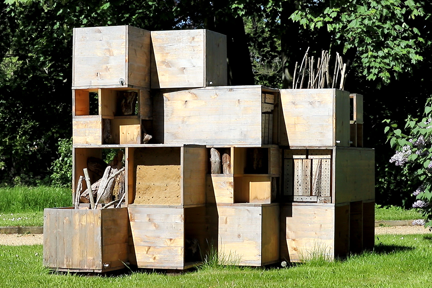 Auf der TU-Night gibt es mehr Informationen über Projekte zur Förderung von Wildbienen.