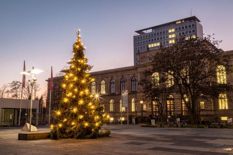 In diesem Jahr wurde ganz bewusst keine extra gezüchtete Tanne für den Universitätsplatz ausgewählt. Der Baum stand vorher am Campus Nord und musste gefällt werden. Bildnachweis: Markus Hörster/TU Braunschweig