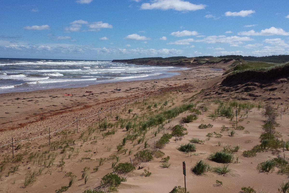 Februar: Gefragte Expertise aus dem Küsteningenieurwesen
