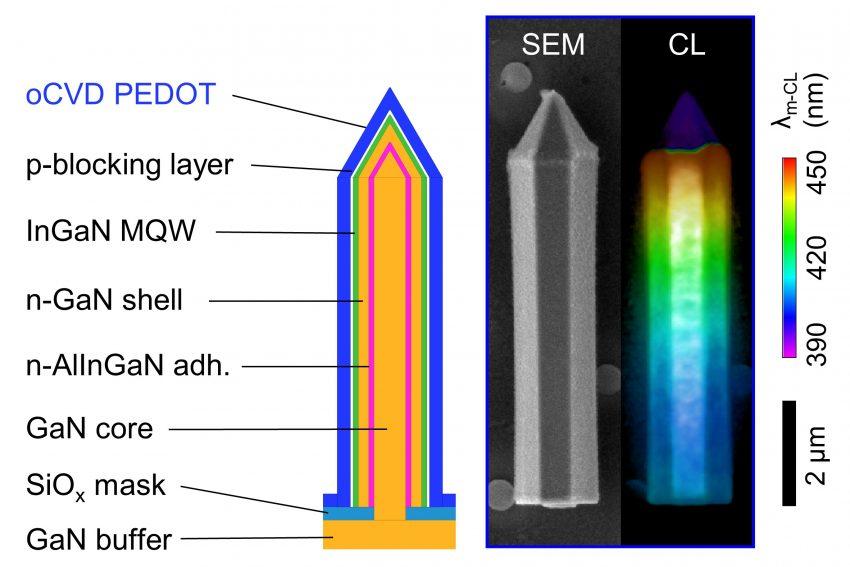 Schematischer LED-Querschnitt und Mikroskopbild einer einzelnen Säule.
