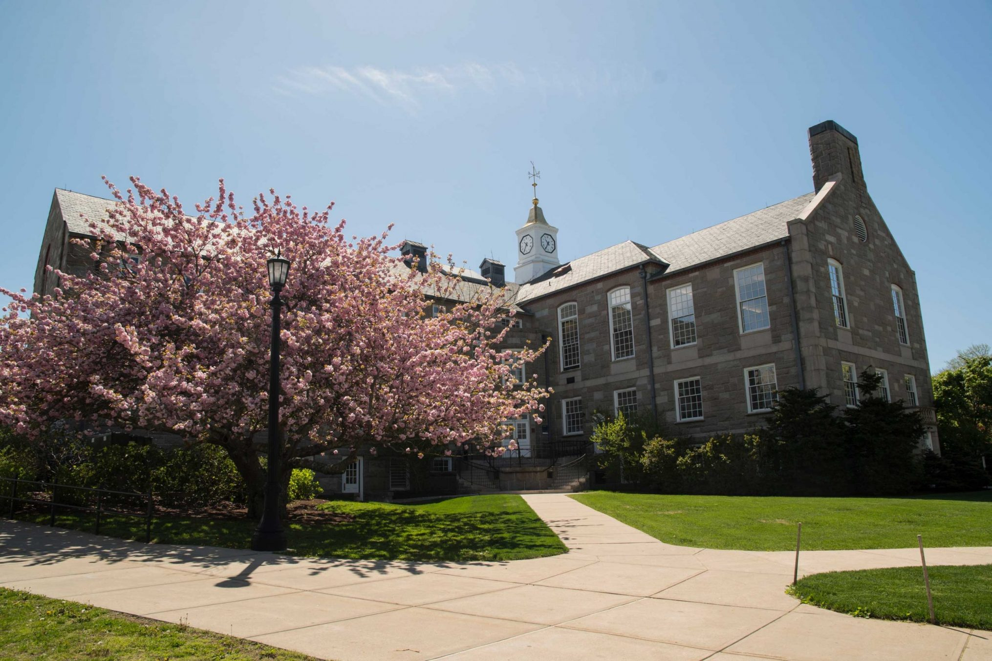 The picture shows a university building on the URI campus. In the foreground is a flowering cherry tree.