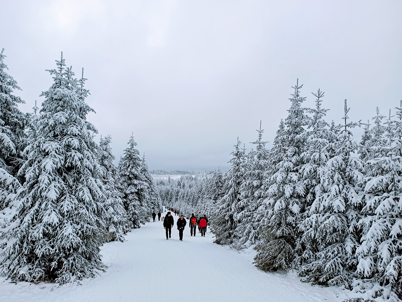 Hier bin ich am Silvesternachmittag 2020 bei meiner ersten Brockenwanderung und meinem ersten wirklichen Schneeerlebnis zu sehen. Bildnachweis: Alejandro Mesa Heredia